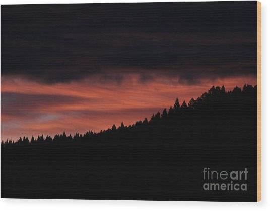 Wood Print featuring the photograph Morning View by Ann E Robson