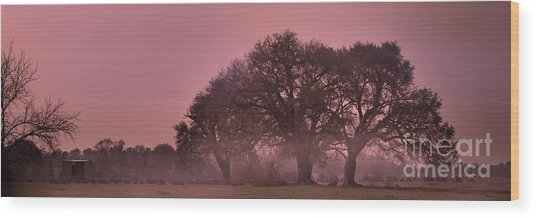 Morning Whispers In Mississippi Wood Print