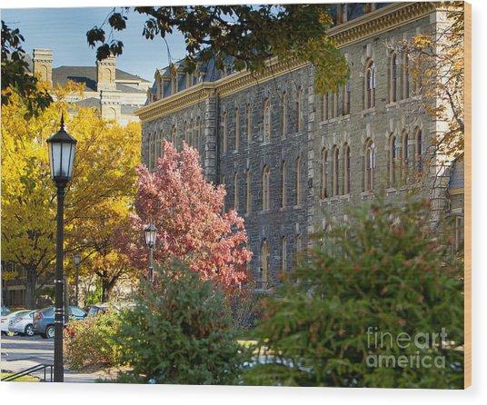 Morrill Hall Cornell University Wood Print