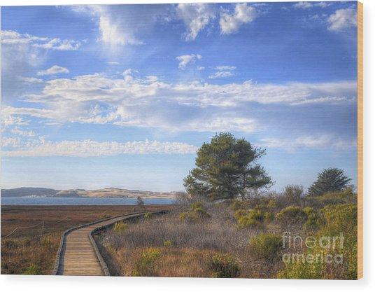 Morro Bay Boardwalk Wood Print