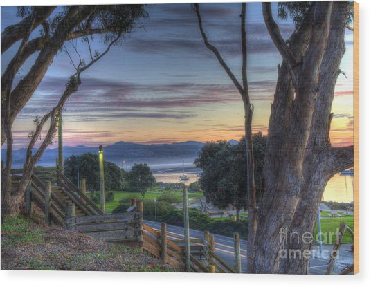 Morro Bay Vista Wood Print