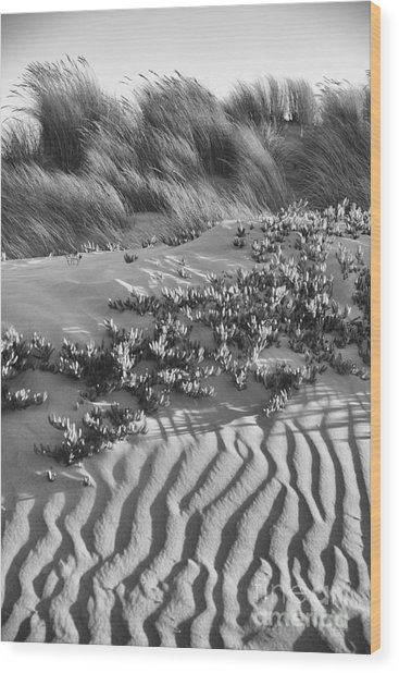 Morro Beach Textures Bw Wood Print