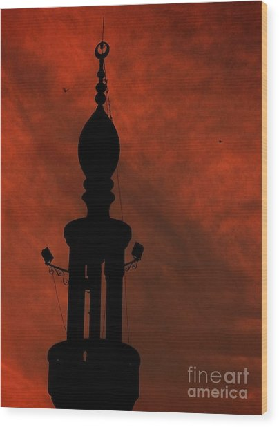 Mosque Wood Print by Mohamed Elkhamisy