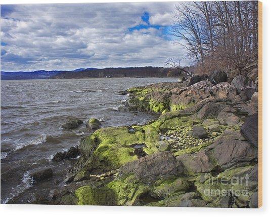 Moss Along The Hudson River Wood Print