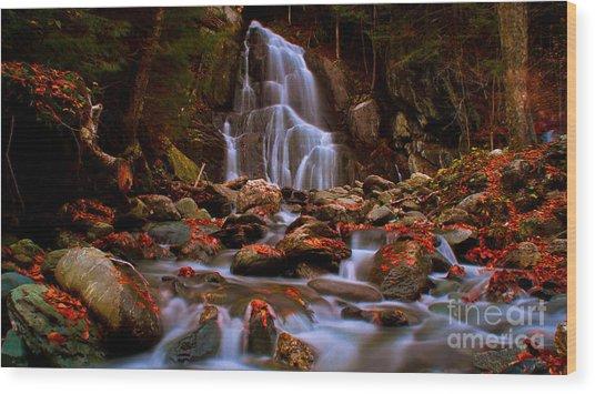 Moss Glen Falls Wood Print