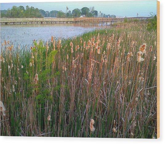 Moss Landing Washington North Carolina Wood Print