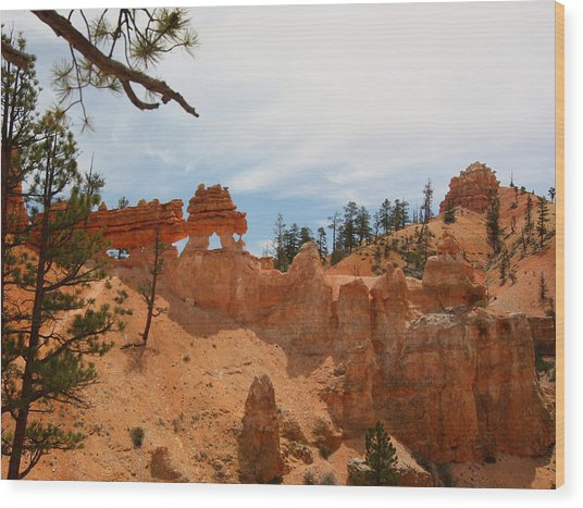 Mossey Creek Trail Arches Wood Print