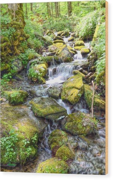 Mossy Creek Wood Print by Bob Jackson