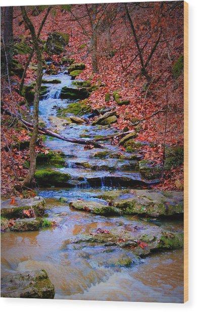 Mossy Creek Wood Print