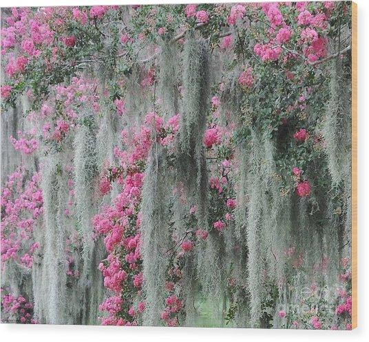 Mossy Crepe Myrtle Wood Print