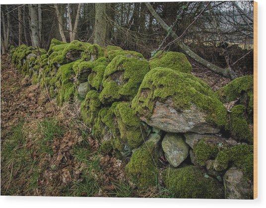 Mossy Stone Fence Wood Print