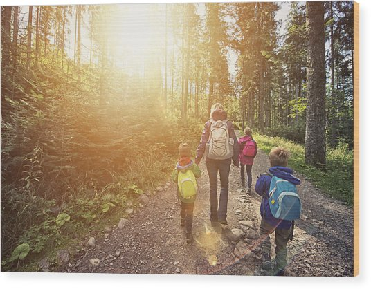 Mother And Kids Hiking In Sunny Forest Wood Print by Imgorthand