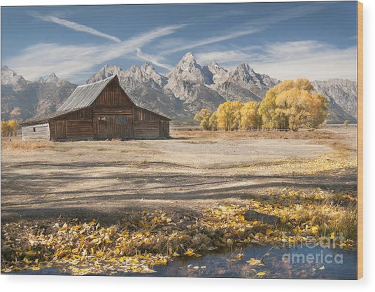 Moulton Barn Autumn Wood Print
