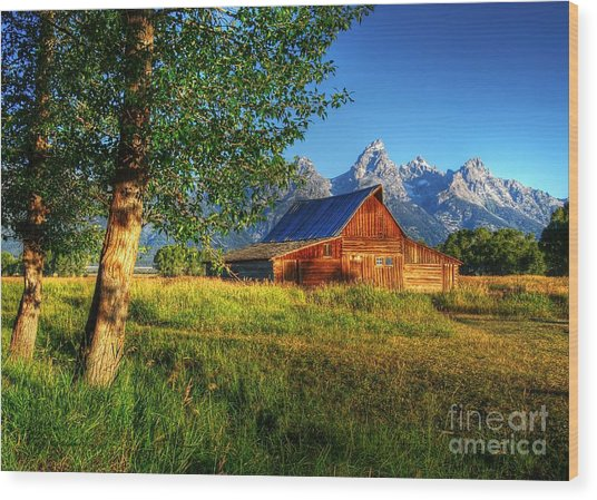 Moulton's Barn 3 Wood Print