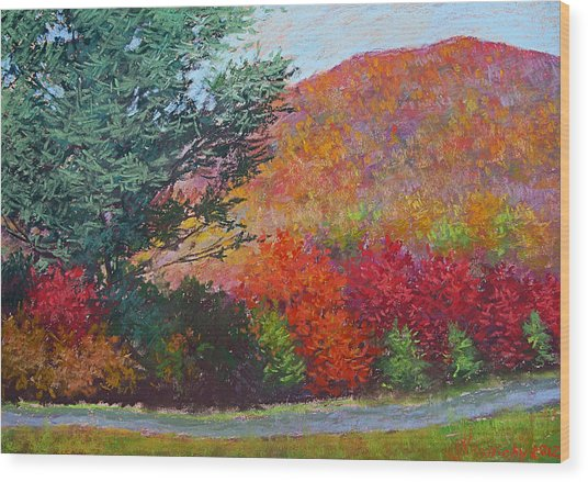 Moungtains In September Wood Print by Julia Lesnichy