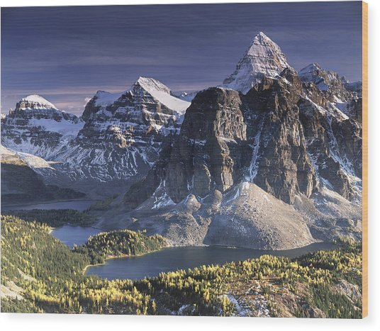 Mount Assiniboine In The Fall Wood Print by Richard Berry