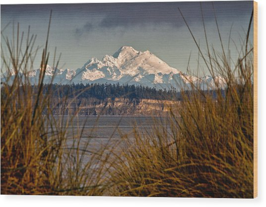 Mount Baker From Port Townsend Wood Print