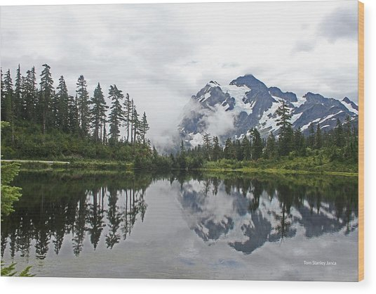 Mount Baker- Lake- Fir Trees And  Fog Wood Print