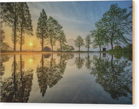 Mount Fuji Reflected In Lake , Japan Wood Print