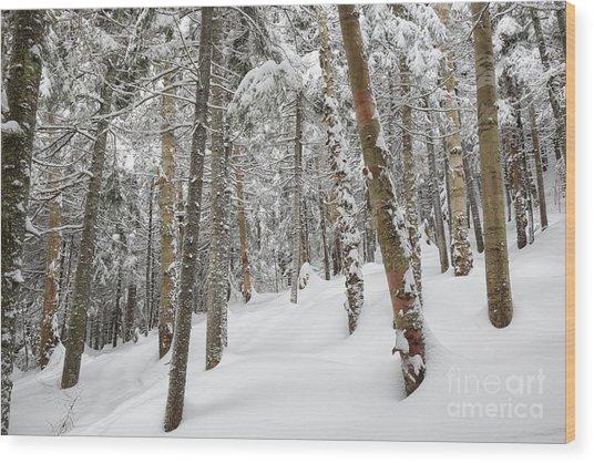 Mount Jim - Kinsman Notch New Hampshire Usa  Wood Print