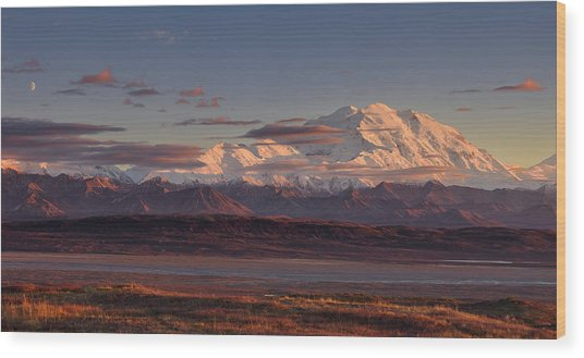 Mount Mckinley - Denali National Park Wood Print