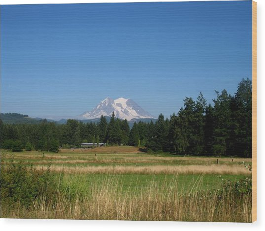 Mount Rainier 8 Wood Print by Kathy Long