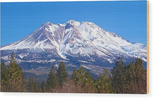 Mount Shasta California February 2013 Wood Print