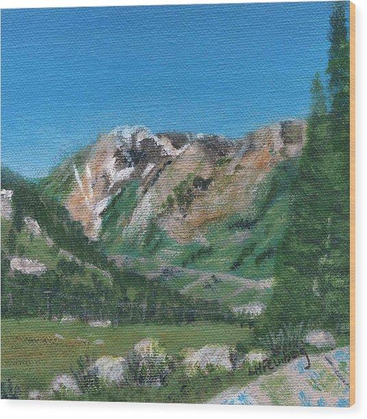 Mount Superior Wood Print