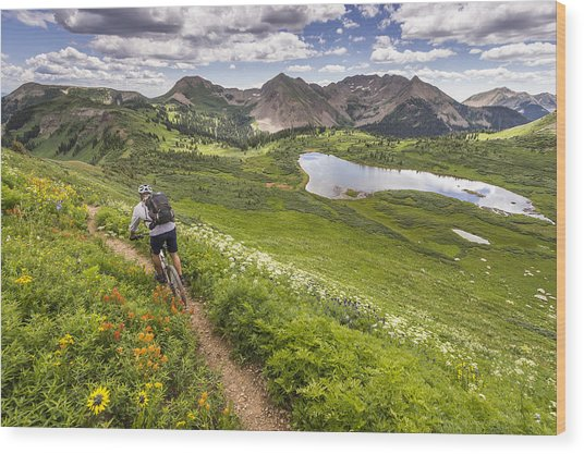 Mountain Biker On Green Trail Wood Print by Image Source RF/©Whit Richardson