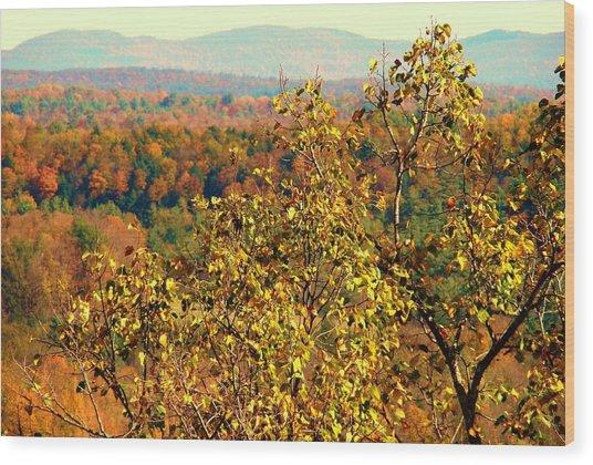Mountain Foliage Series 012 Wood Print