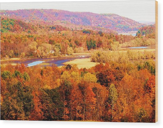 Mountain Foliage Series 023 Wood Print