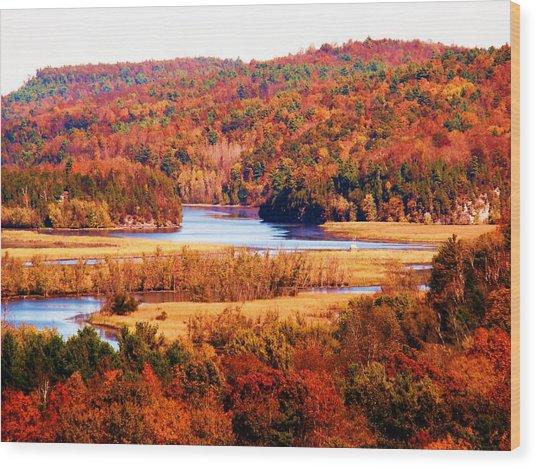 Mountain Foliage Series 029 Wood Print