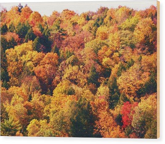 Mountain Foliage Series 054 Wood Print