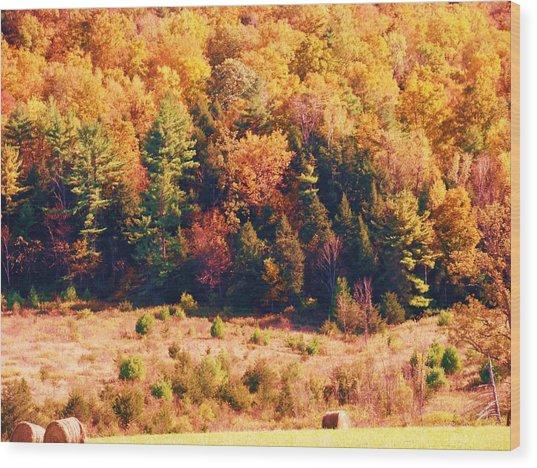 Mountain Foliage Series 057 Wood Print