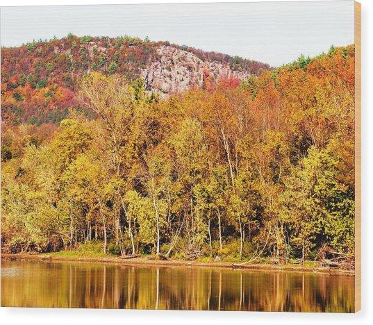 Mountain Foliage Series 068 Wood Print