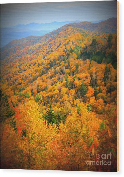 Mountain Glory In The Smokies Wood Print