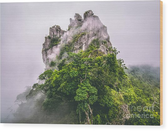 Mountain In The Cloud And Fog Wood Print by Vasek Rak