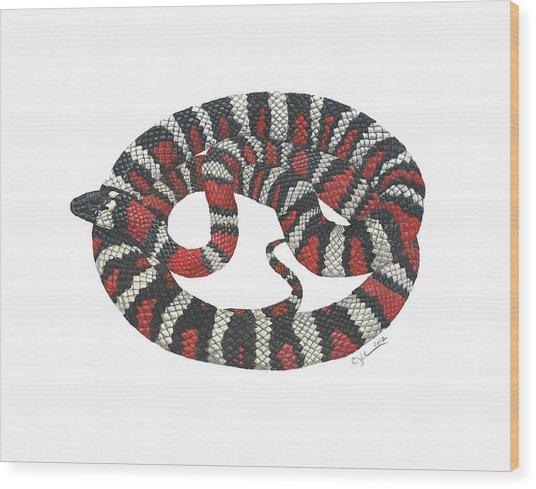Mountain King Snake Wood Print