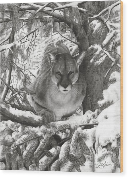 Mountain Lion Hideout Wood Print