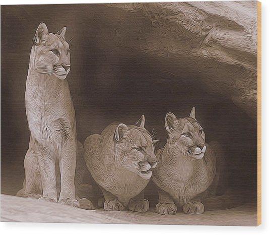 Mountain Lion Trio On Alert Wood Print
