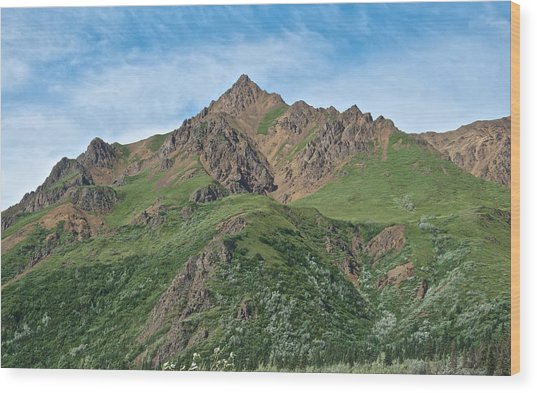 Mountain On One Side Of Toklat River In Denali Np-ak Wood Print
