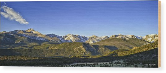 Mountain Panorama Wood Print by Tom Wilbert