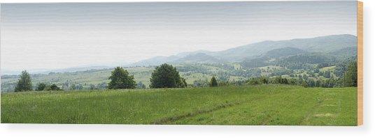 Mountain Panorama Wood Print