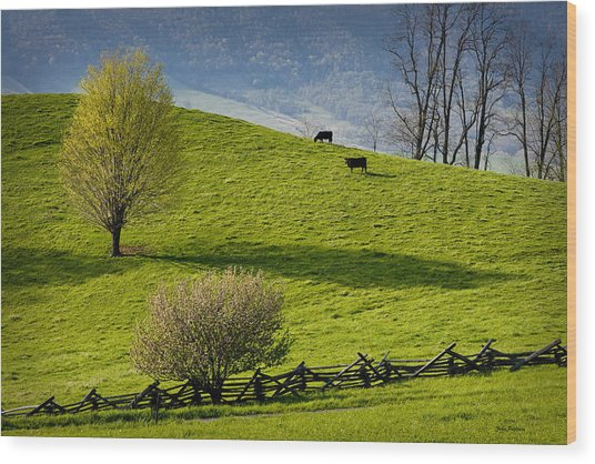 Mountain Pasture With Two Cows Wood Print