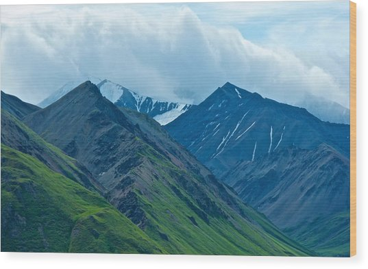Mountain Peaks From Eielson Visitor's Center In Denali Np-ak Wood Print