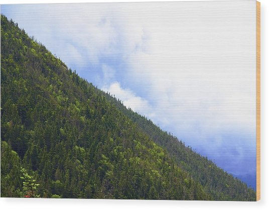 Mountain Side Wood Print