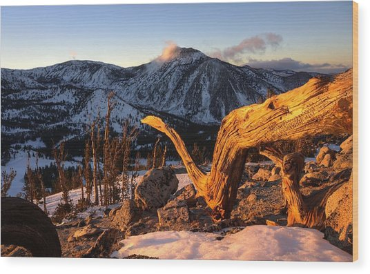 Mountain Snake Wood Print