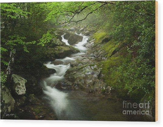 Mountain Stream 2010 Wood Print