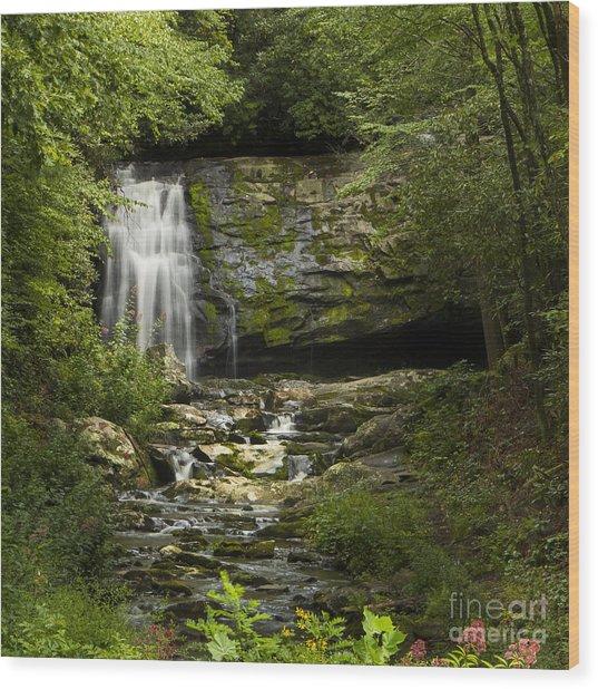 Mountain Stream Falls Wood Print