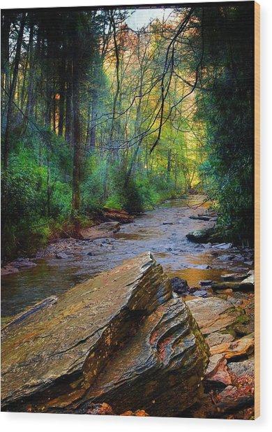 Mountain Stream N.c. Wood Print